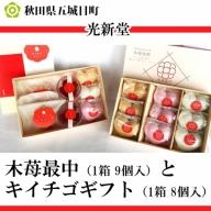 光新堂 木苺最中(1箱)とキイチゴギフト(1箱)