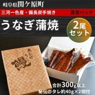 【三河一色産・備長炭手焼き】うなぎ蒲焼 2尾セット
