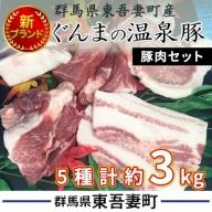 群馬県東吾妻町産 新ブランド『ぐんまの温泉豚』豚肉セット 約3kg