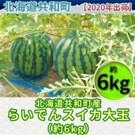 【2020年出荷】北海道共和町産らいでんスイカ大玉(約6kg)