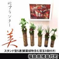 竹プランター「美」スタンド型5連(観葉植物含む苔玉5個付き)