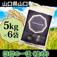B-055 維新の一粒5kg×6袋(白米)