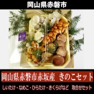 岡山県赤磐市赤坂産 きのこセット