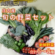 庄内産 旬の野菜セット