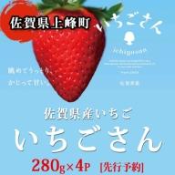 B-501 佐賀県産いちご「いちごさん」280gx4P[先行予約]