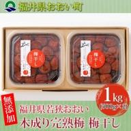 福井県若狭おおい 木成り完熟梅 梅干し 【 無添加 】1kg