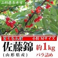 H036 【小粒・Mサイズ】さくらんぼ佐藤錦(山形県産) 約1kg