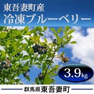 東吾妻町産 冷凍ブルーベリー3.9kg