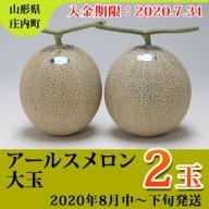 【20-203】アールスメロン大玉2玉(2020年8月中~下旬発送 入金期限:2020.7.31)