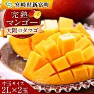 <予約>宮崎県産マンゴー[太陽のタマゴ]2L×2玉 化粧箱入り【C218】