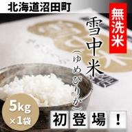 【1010-06】無洗米「雪中米(ゆめぴりか)」が初登場!【5kg】