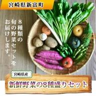 宮崎県産の新鮮野菜 8種盛りセット【B374】