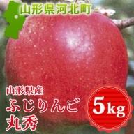 A-01019 山形県産ふじりんご5kg(丸秀)