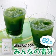 ZF34.【国産野菜100%】みんなの青汁(31包)×2袋セット
