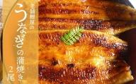 老舗鯉屋のうなぎ蒲焼き 2尾(1尾120~130g)真空パック 国産
