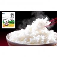 特別栽培米 近江こにゃん米きぬむすめ20kg