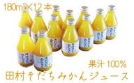果汁100% 田村そだちみかんジュース 180ml×12本