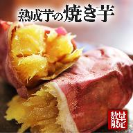 A1-1904/つらさげの里からの贈り物 ~熟成焼き芋~(4パック)