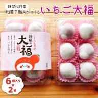 【新型コロナ被害支援】和菓子職人がつくるいちご大福 6個入り2箱