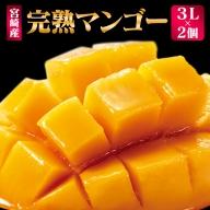 「南国宮崎からお届け」児玉農園 完熟マンゴー 2個 3Lサイズ【C247】