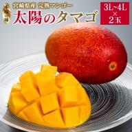 [先行予約]宮崎県産完熟マンゴー「太陽のタマゴ」×2玉(3L~4L) ※2021年5月中旬~7月末の収穫期間内出荷【D71】