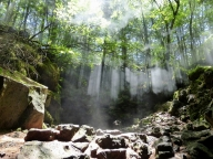 青木ケ原樹海の3ケ所の天然洞窟とディープな樹海散策5時間コース【大人3名様分体験チケット】