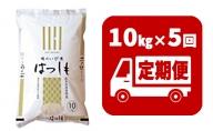 定期便 揖斐郡産  味のいび米はつしも精米10kg×5ヶ月
