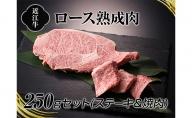 A4等級以上保証!!近江牛熟成肉ステーキ&焼肉セット250g