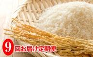 ◆9ヶ月連続定期便◆JAきょうわ米  ななつぼし5kg