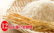◆12ヶ月連続定期便◆JAきょうわ米  ななつぼし5kg