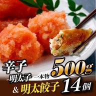 ZH38.辛子明太子一本物500g&明太餃子(14個入り)