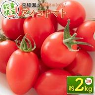 <完熟ミニトマト>新鮮アイコトマト 2kg ※2021年5月上旬迄の収穫期間内出荷【A83】