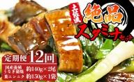 【12カ月定期便】国産うなぎ140g×2尾 有機葉ニンニク付き Y-36