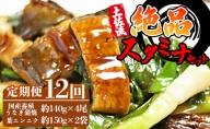 【12カ月定期便】国産うなぎ140g×4尾 有機葉ニンニク付き Y-37