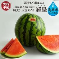 AE167特大!大玉スイカ~羅皇(ラオウ)~(3Lサイズ8kg以上)