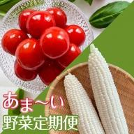 【定期便】あま~い野菜定期便