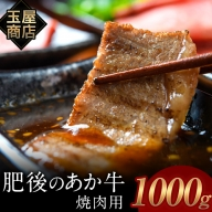 熊本の和牛 肥後のあか牛 焼肉用 1000g 玉屋商店 あか牛 赤牛 あかうし《2月中旬-3月末頃より順次出荷》