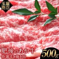 熊本の和牛 肥後のあか牛 特選すき焼き用 500g 玉屋商店 熊本あか牛 赤牛 あかうし《2月中旬-3月末頃より順次出荷》