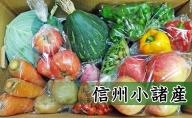 信州小諸 母ちゃんから季節野菜の贈り物 長野 野菜詰合せ