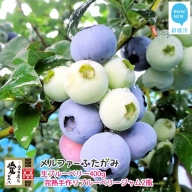 【先行予約】旬にお届け 完全無農薬栽培 完熟生ブルーベリー400g、完熟手作りブルーベリージャム2瓶セット