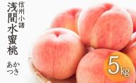 浅間水蜜桃 みつおかのもも 秀品 約5kg あかつき 長野 信州 桃 モモ 5キロ 直送