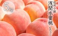 浅間水蜜桃 みつおかのもも 秀品 約5kg なつっこ 長野 信州 小諸 桃 モモ 5キロ 直送