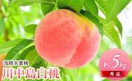 浅間水蜜桃 みつおかのもも 秀品 約5kg 川中島白桃 長野 信州 小諸 桃 モモ 5キロ 直送