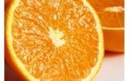 【ジューシー】 清見オレンジ 5kg