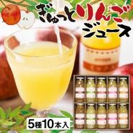 ぎゅっとりんごジュース 5種10本 飲み比べ 化粧箱入り 100%飛騨リンゴを使っておいしさを凝縮したジュース 農家直送 黒内果樹園 ギフト お中元 にも
