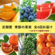 【定期便】定期便全6回 農園採れたて『季節の果実』をお届け