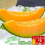 b5-128 【春限定】数量限定!食べるタイミングがわかるメロン「秘蔵っ娘」赤玉(赤肉)2個