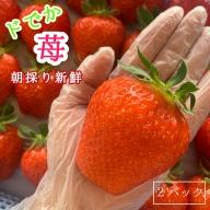 【ふるさと納税】朝採り直送 新鮮ドでかイチゴ 2パック