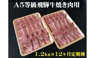 【12ヶ月定期便】A5等級 飛騨牛 焼き肉用 1.2kg ロース又は肩ロース肉