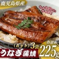 A-0108 鹿児島県産うなぎ蒲焼カット 約225g(約75g×3袋)